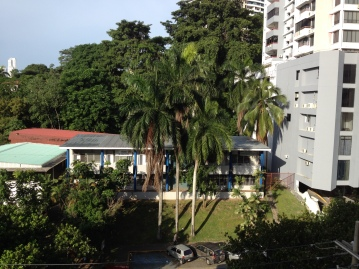 Tropical Foliage in the City