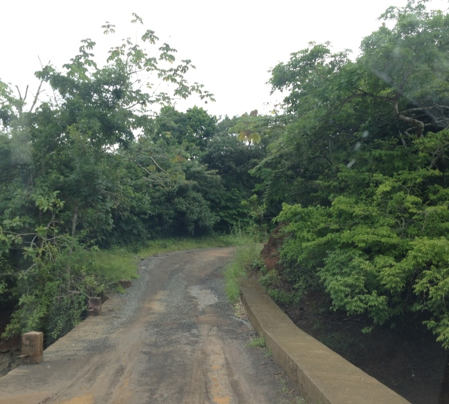 Drive through Panamamadias