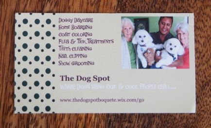 The Dog Spot Card