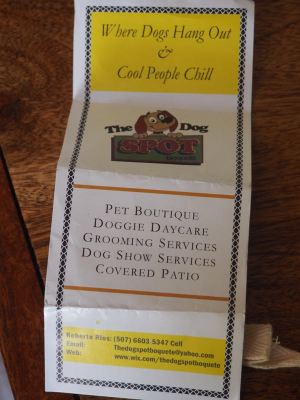 The Dog Spot Brochure 1